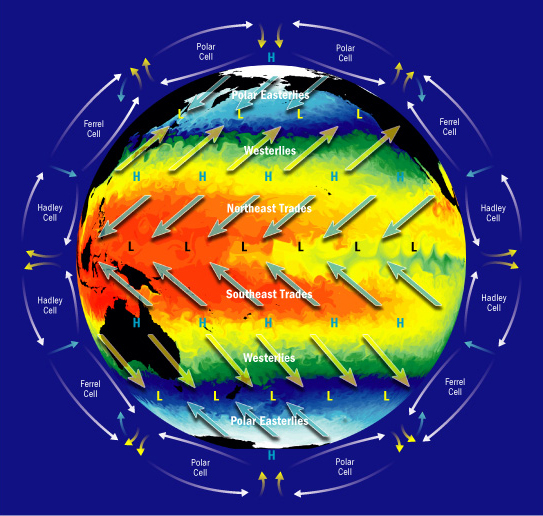 Large-scale Circulations in the Earth's Atmosphere